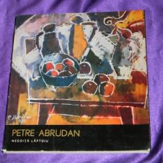 Petre Abrudan album - Negoita Laptoiu colectia artisti romani (f0155 - Album Arta