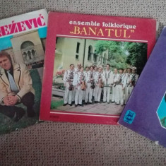 Muzica Populara electrecord vinil cu Ans.folkloric Banatul, Laza Knezevici, Ioana Radu