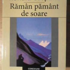 Raman Pamant De Soare - Ronald Gasparic, 387197 - Carte poezie