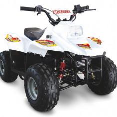 Linhai 50SX '16 - ATV
