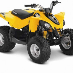 Can-Am DS 90 '15 - Quad