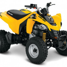 Can-Am DS 250 '16