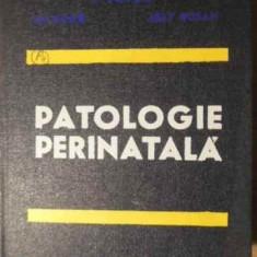 Patologie Perinatala - Gh. Ursu I. Lupea L. Rosan, 387045