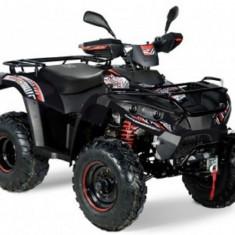 ATV Linhai DragonFly 300 4x4 S - cadou cutie spate