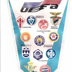 Fanion fotbal UNIVERSITATEA CRAIOVA in Cupele Europene