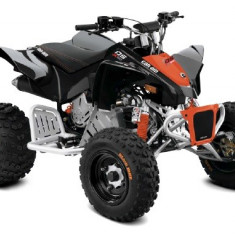 Can-Am DS 90 X '17