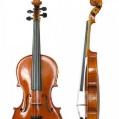 Vioara pentru copii Grade Violini