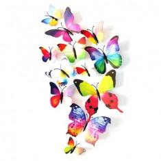 Fluturi 3D cu magnet, decoratiuni casa sau evenimente, set 12 bucati, colorati - Magnet frigider