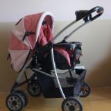 Carucior Baby Care 2 in 1