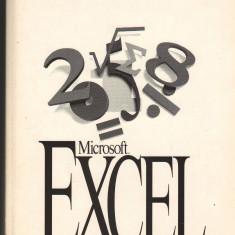 (C7099) MICROSOFT EXCEL. VERSIUNEA 5.0. GHIDUL UTILIZATORULUI - Carte Microsoft Office