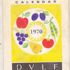 bnk cld Calendar de buzunar 1970 - DVLF