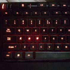 Tastatura Microsoft SideWinder X4