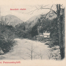 PETROSANI, SALUTARI DIN PETROSANI, CLASICA - Carte Postala Transilvania pana la 1904, Necirculata, Printata