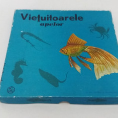 JOC VECHI DE COLECȚIE: VIEȚUITOARELE APELOR/ 1968 - Joc colectie