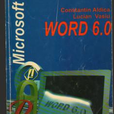 (C7100) CONSTANTIN ALDICA, LUCIAN VASIU - WORD 6.0 - Carte Microsoft Office