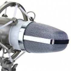Microfon special pentru studio si inregistrari DL-700