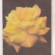 Bnk cld Calendar 1987 - Revista Femeia
