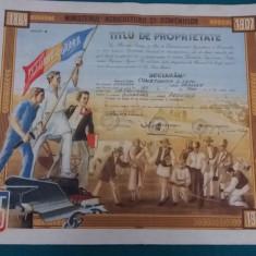 TITLU DE PROPRIETATE *REFORMA AGRARĂ* MINISTERUL AGRICULTURII ȘI DOMENIILOR*1945 - Diploma/Certificat