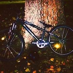 Vand BMX DirtStyle/ Schimb si cu caini - Bicicleta BMX Wtp, 24 inch, Numar viteze: 1