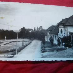 Ilustrata Targoviste - Aleea Manastirii Dealu 1943, cenzurata - Carte Postala Muntenia dupa 1918, Circulata, Fotografie