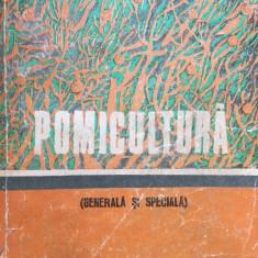 POMICULTURA Generala si Speciala - Popescu, Militiu, Cireasa, Godeanu - Carti Agronomie