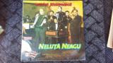 NELUTA NEAGU - MUZICA LAUTAREASCA , VINIL FARA ZGARIETURI .