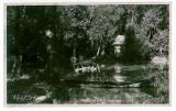 3690 - VALCOV, Chilia, Tulcea - old postcard, real PHOTO - unused, Necirculata, Fotografie