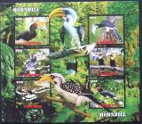 INS. COMORE 2016 - PASARI, HORNBILL, 1 M/SH NEDANTELATA, NEOBLITERATA - PP 1331