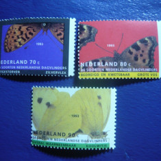 Serie Fluturi 1993 Olanda, 3 valori - Timbre straine, Nestampilat