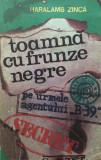 TOAMNA CU FRUNZE NEGRE - Haralamb Zinca