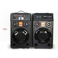Temeisheng DP-284A boxe active 1500 W, egalizator 7 benzi EQ - Boxa activa