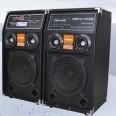 Temeisheng DP283A boxe cu 7 egalizator benzi, corectare de bass, treble - Boxa activa