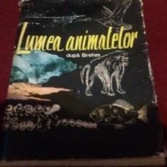 LUMEA ANIMALELOR DUPA BREHM - Carte Zoologie