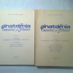 N. Diaconescu, s.a. - Anatomia capului si gatului {LITO I.M.T. 1988, 2 volume}