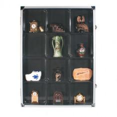 Aluminium cutie pentru fosile minerale si roci - Fosila roca