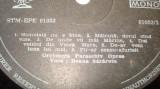 Disc  vinil - Ileana  Sararoiu