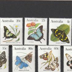 Fauna, fluturi, Australia. - Timbre straine, Nestampilat
