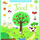 My First Book about Food - Usborne book