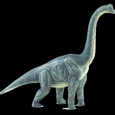 FIGURINA BRACHIOSAURUS - Figurina Dinozauri