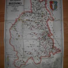 Harta Etnografica a Bucovinei(1910) - Harta Romaniei