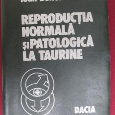 Reproductia normala si patologia la taurine - Carte Zoologie