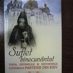 Suflet binecuvantat. Partenie din Kiev