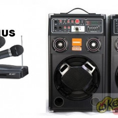 SISTEM  2 BOXE ACTIVE/AMPLIFICATE 250 WATT CU MIXER SI MP3 PLAYER +2 MICROFOANE.