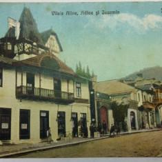 SINAIA - VILELE ALINA, ADINA SI JACOMIN - MAGAZINE - CAZINOURI - ANIMATIE -RARA - Carte Postala Muntenia 1904-1918, Necirculata, Fotografie