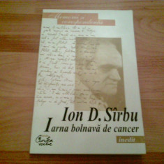 IARNA BOLNAVA DE CANCER - ION D. SIRBU, Curtea Veche
