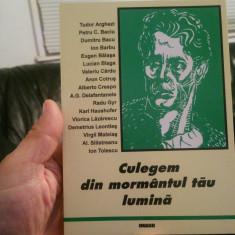 CULEGEM DIN MORMÂNTUL TĂU LUMINĂ ANTOLOGIE LEGIONARĂ 1999 MIȘCAREA LEGIONARA 120 - Istorie