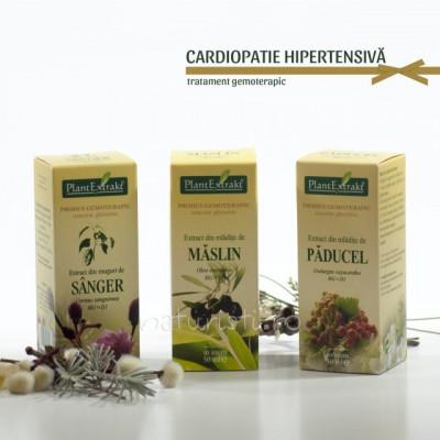 Tratament naturist - Cardiopatie hipertensiva (pachet) foto