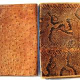 2 mape vechi de acte documente din piele de sarpe si piele de strut
