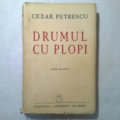 Cezar Petrescu - Drumul cu plopi - Roman