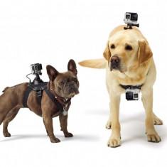 Fetch Dog Harness / Ham pentru caini cu prindere quick-release compatibil GoPro